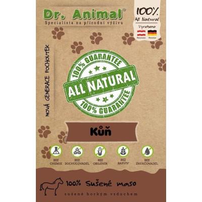 Dr. Animal - 100% sušené maso kůň 100g